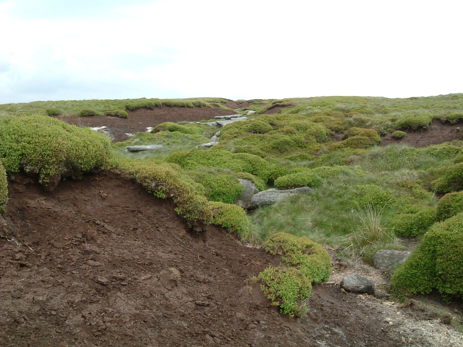 Peat bog after Kinder Downfall