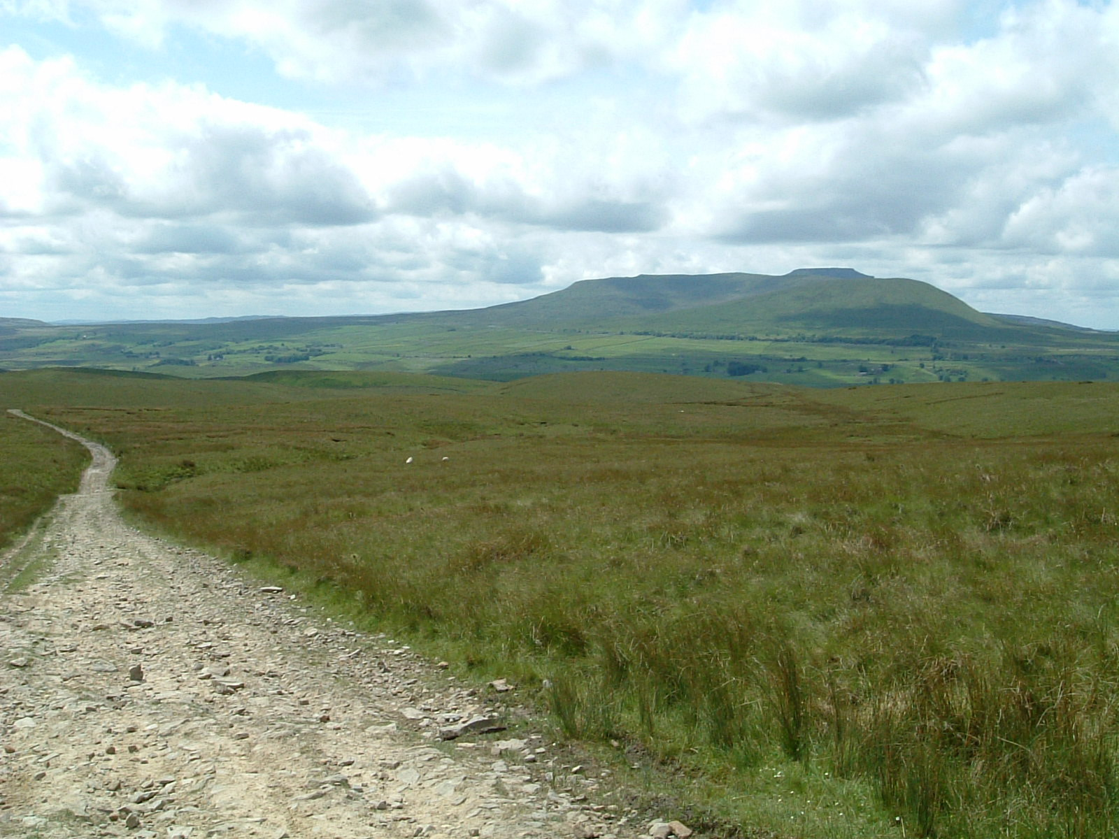 Looking back to Whernside from the Roman road across Cam Fell