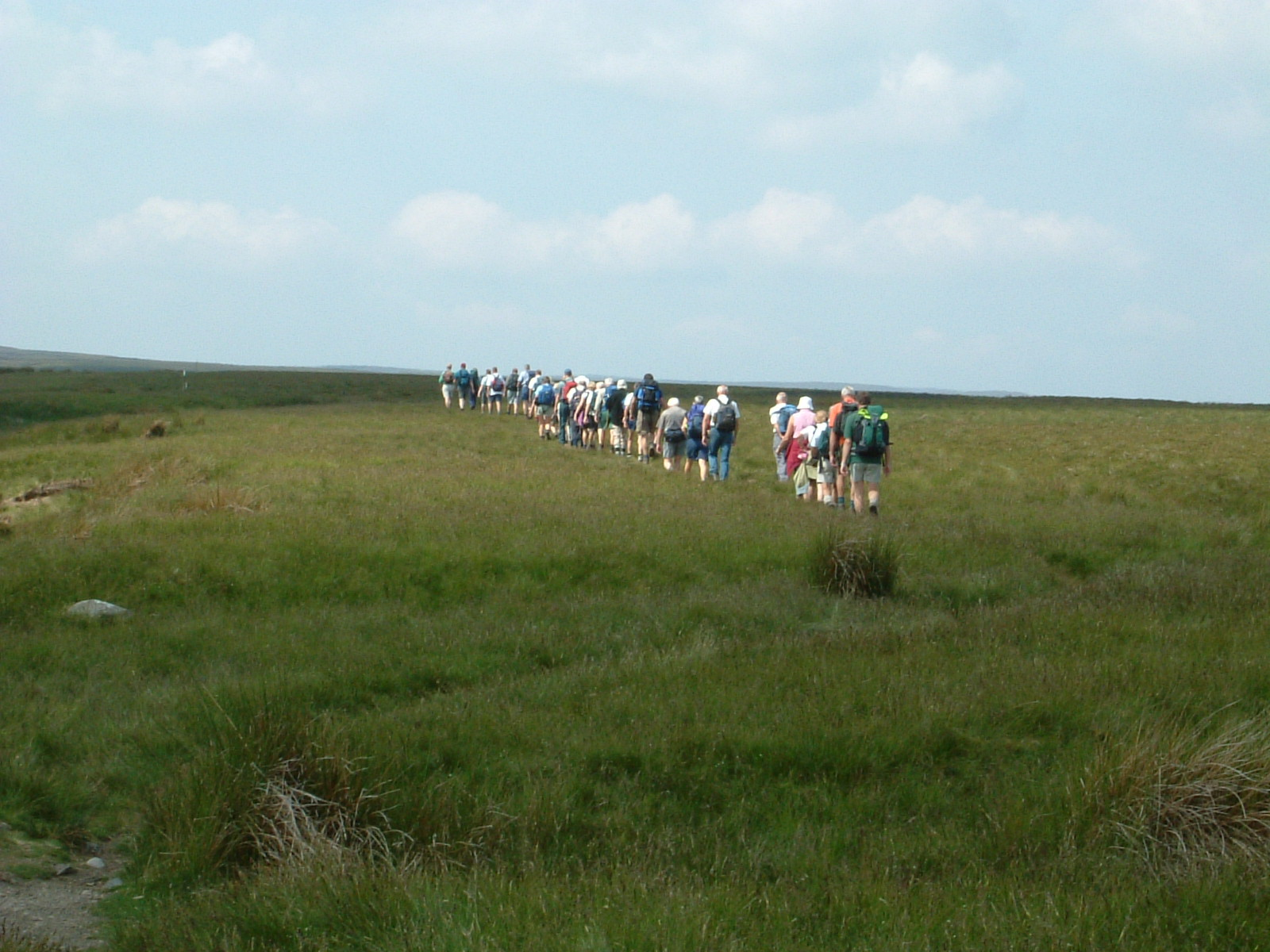 A large party of walkers on Sleightholme Moor