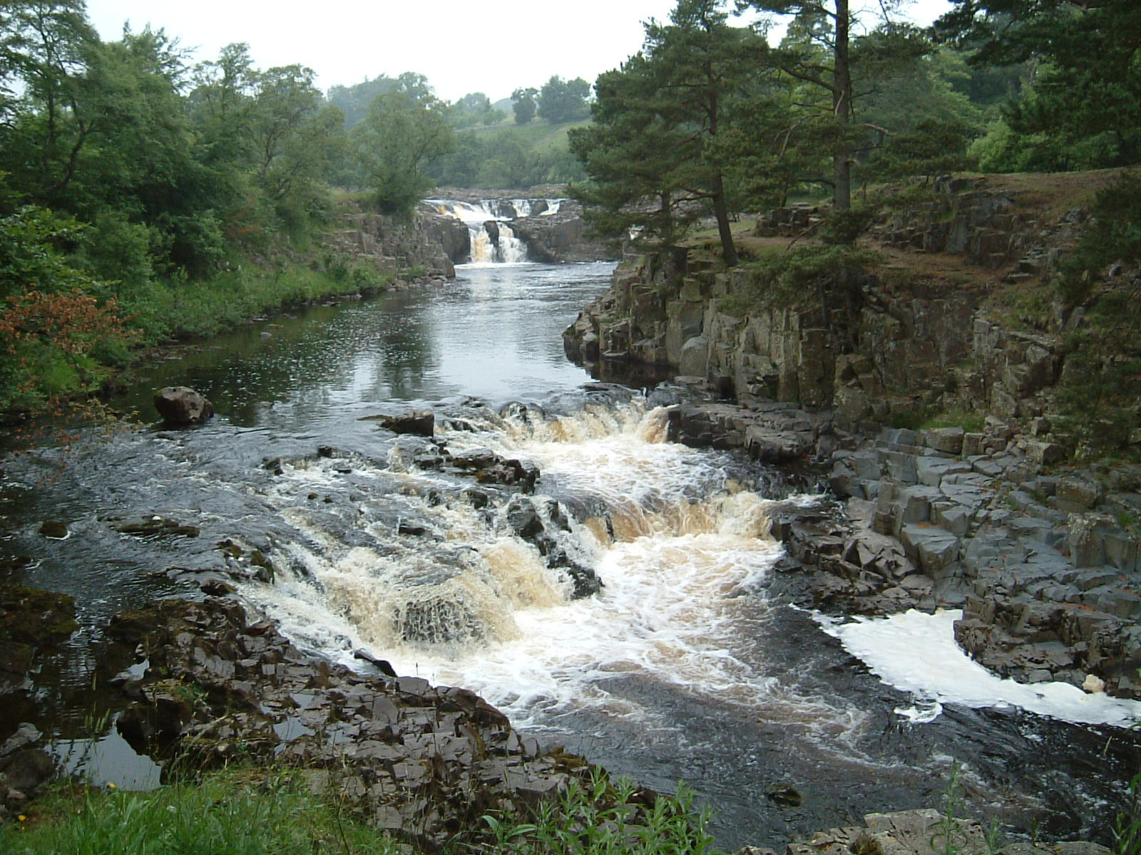 Low Force on the River Tees