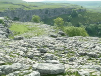 The limestone pavement at Malham Cove