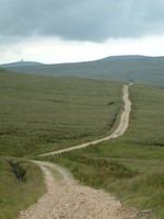 A path on Cross Fell