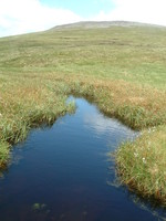 A tarn by Cross Fell