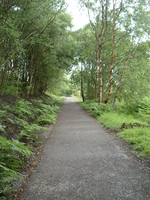 The South Tyne Trail