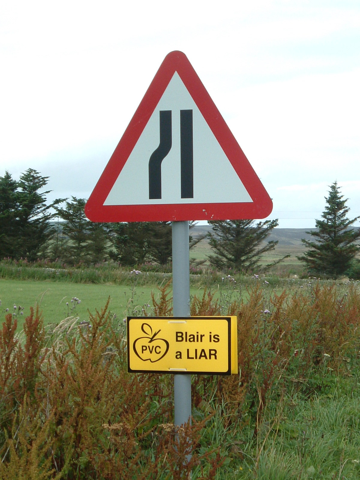 A sign saying 'Blair is a Liar'