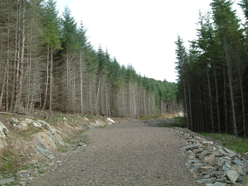Forestry Commission land