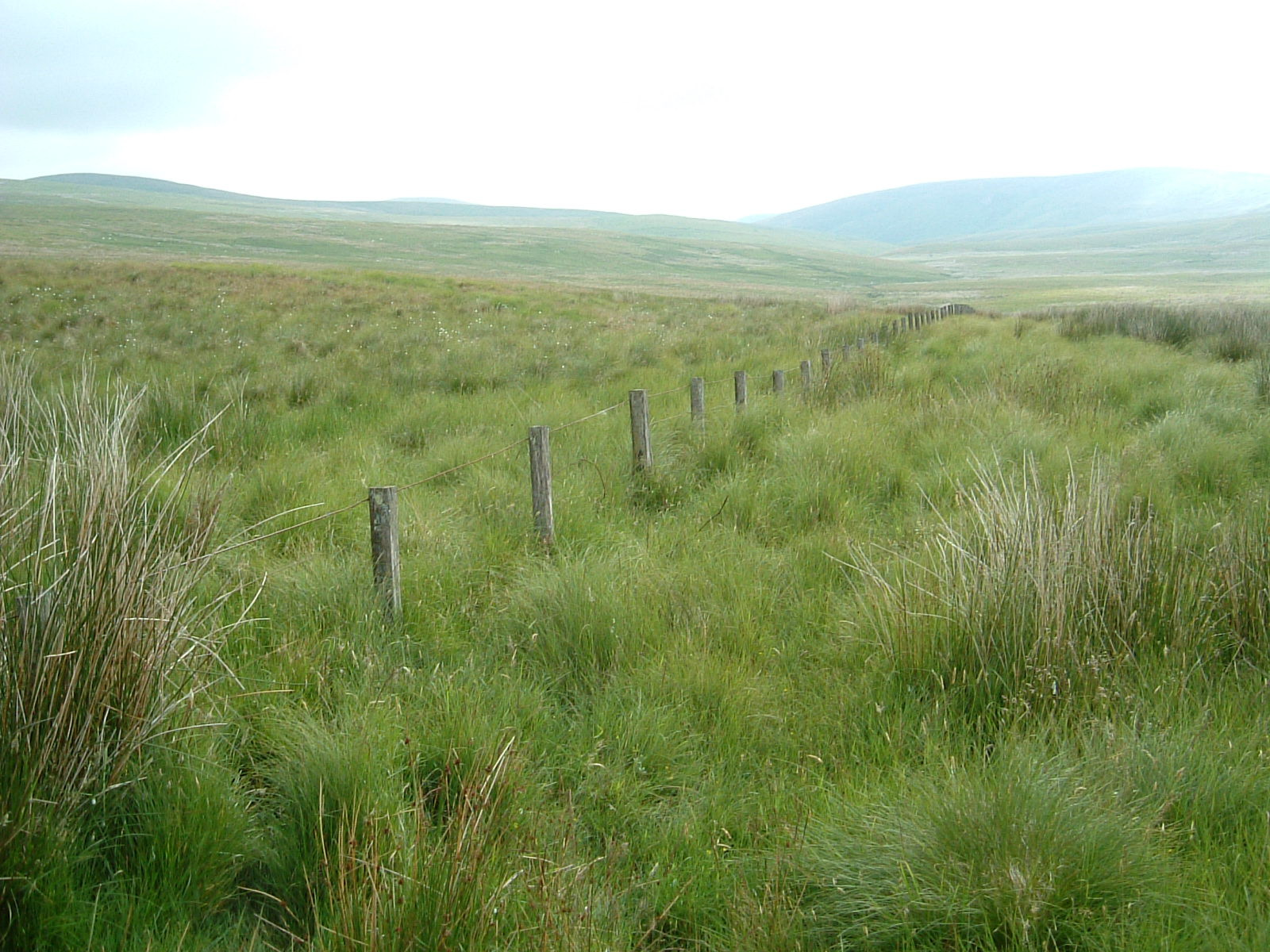 A fence marking the Scottish border