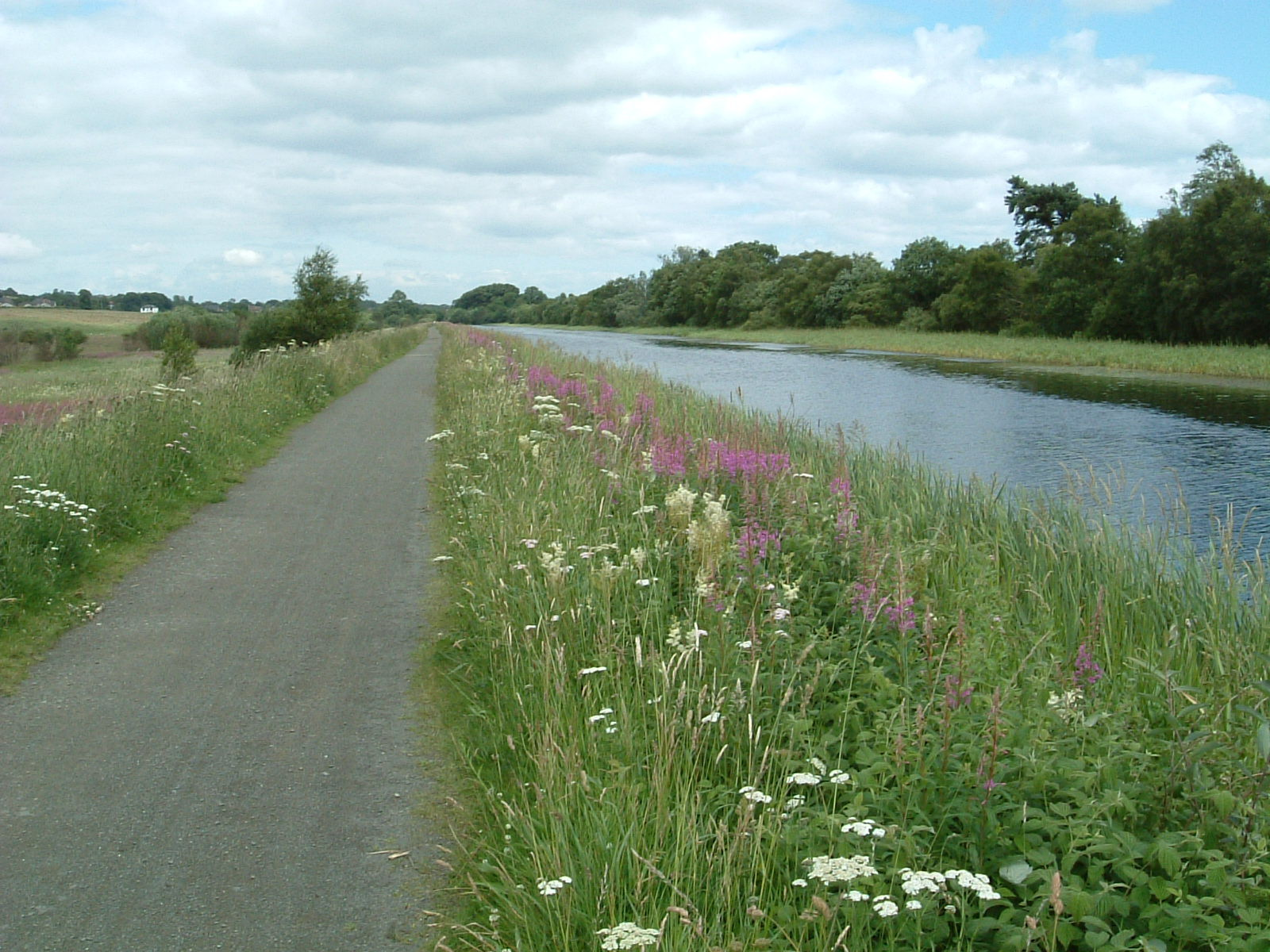 The Forth and Clyde Canal near Kilsyth