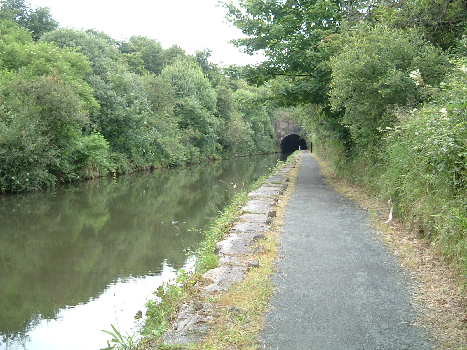 The tunnel near Callendar House