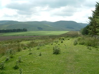 Looking south down Dere Street