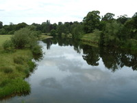 The tranquil River Teviot