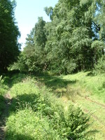 The disused railway line near Duntreath Castle