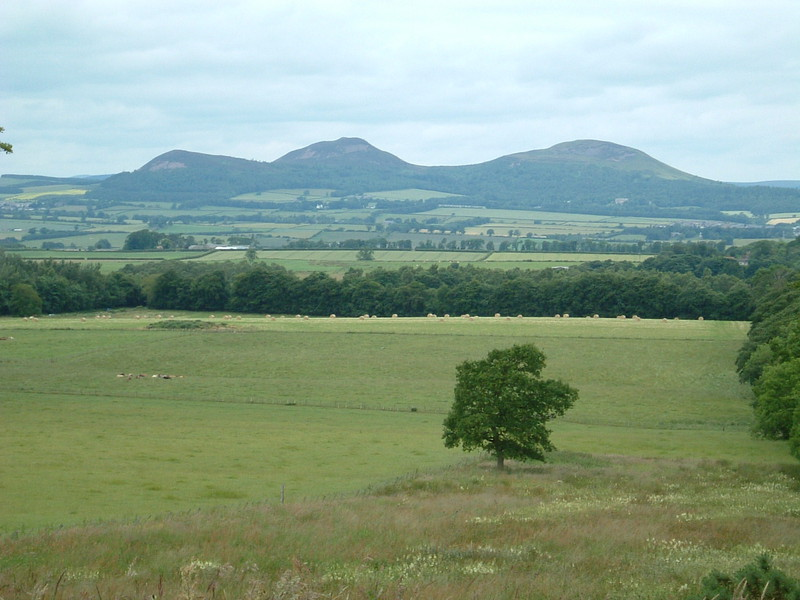 The Eildon Hills from Dere Street