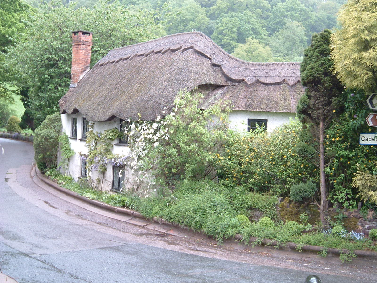 A wonderful cottage on Dart Bridge