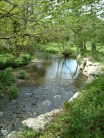 The River Camel near Poley's Bridge