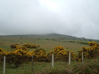 Sourton Tors in the rain