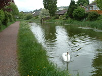 The Great Western Canal