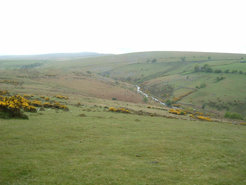 A rather miserable Dartmoor as seen from the Tarka Trail