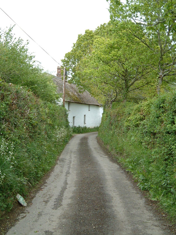 A cottage on a Devon lane
