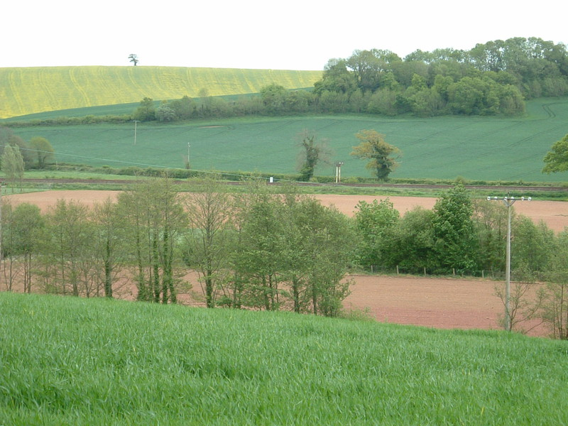 A patchwork of green and brown fields in Devon