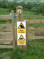 A sign saying 'Bull in Field'
