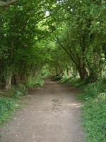 The bridleway to Moorend