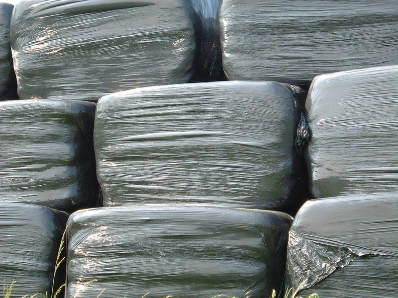 Silage bags stacked in a field