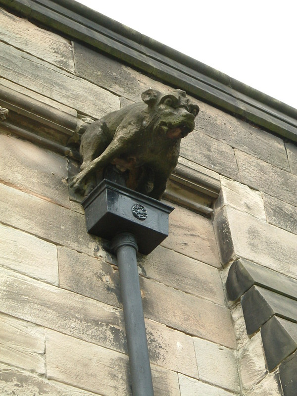 A gargoyle on St Nicholas Church in Abbots Bromley